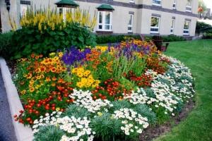 Красивый дизайн и оформление цветников и клумб на даче