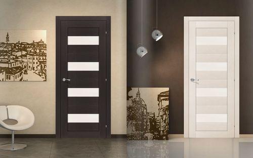 Отзывы про межкомнатные двери экошпон в фото