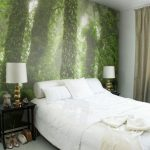 фотообои заросший лес