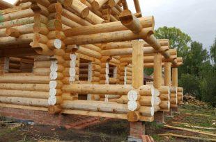Древесина из кедра в строительстве