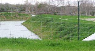 Использование биомата в ландшафтном дизайне