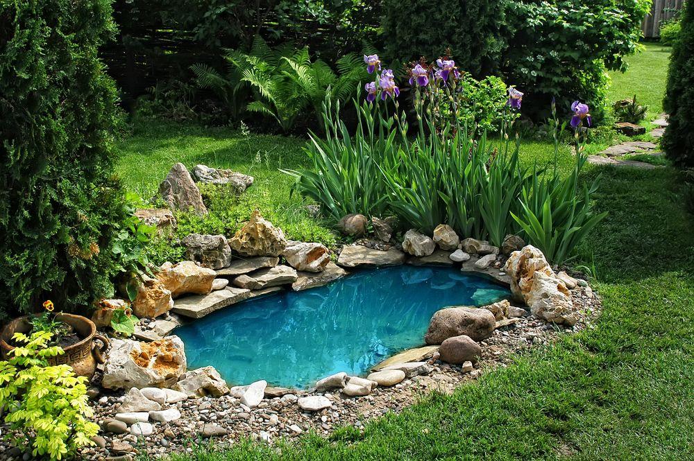 Сад с водоемом своими руками