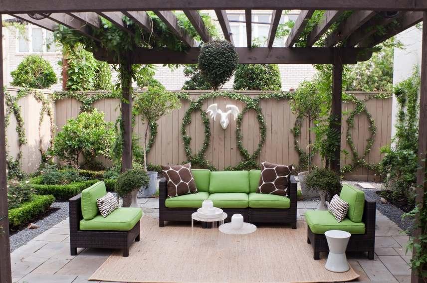 Ландшафтный дизайн. Растения для перголы
