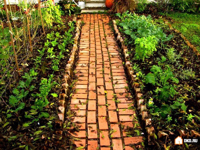 Дорожки в саду - украшаем сами