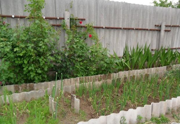Забор из шифера и других материалов