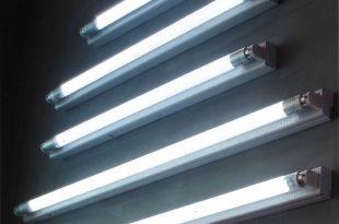 Люминесцентные-лампы-для-рассады