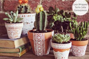 Только свежие комнатные растения, цветы и оригинальные кашпо