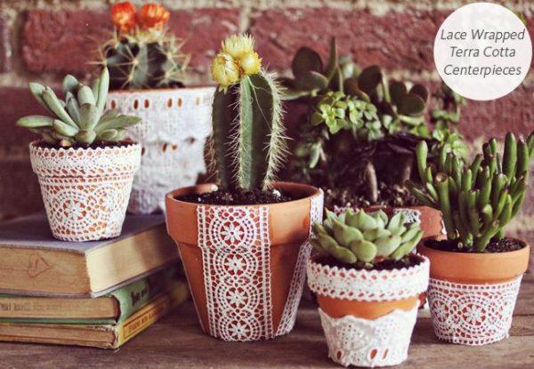 dbb98c2b9c020e39318d63f31428c505--lace-flowers-desert-flowers
