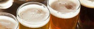 Как в Ставрополе выбрать поставщика для закупок пива оптом